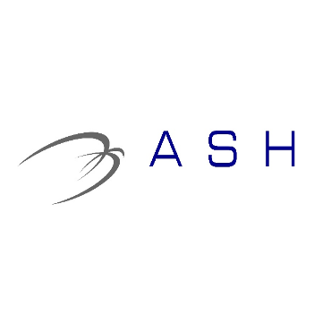 A.S.H Executive Travel