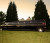 Uptown Limousine Svc