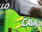 Cavallo Bus Lines